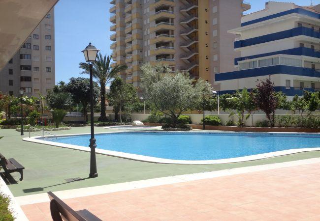 Apartamentos en oropesa del mar alquiler apartamentos en oropesa del mar pagina 2 - Alquiler apartamentos oropesa del mar ...