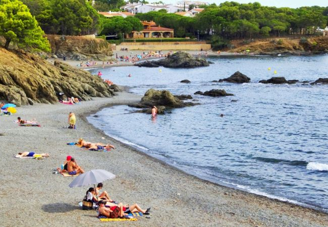 Apartamento en Llança - Apartamento con aireacondicionado a100 mde la playa