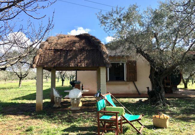 Casa en Cecina - Casa para 4 personas en Cecina