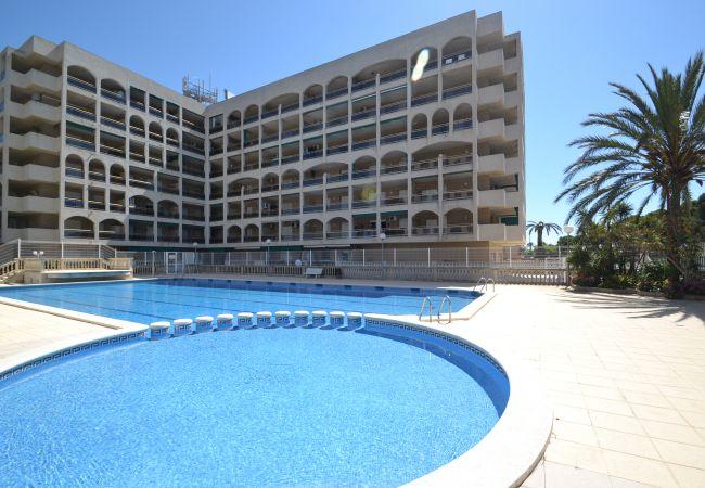 Apartamento en La Pineda - Apartamento con piscina a300 mde la playa