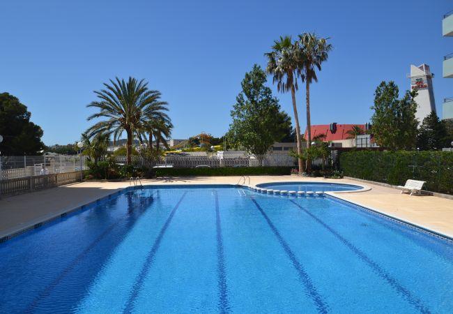 Apartamento en La Pineda - Apartamento de 1 dormitorios a300 mde la playa