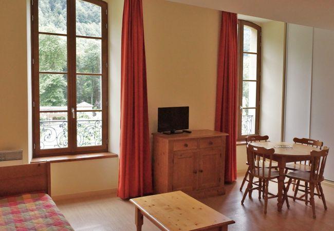 Apartamento en Aulus-les-Bains - Apartamento de 1 dormitorios en Aulus-les-Bains