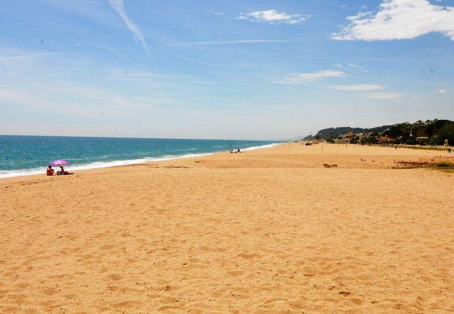 Apartamento en Pineda de Mar - Apartamento de 2 dormitorios a200 mde la playa