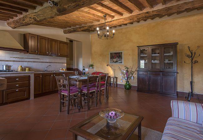 Apartamento en Castellina in Chianti - Apartamento con piscina en Castellina in Chianti