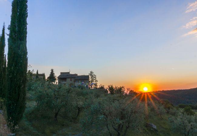 Chalet en Castellina in Chianti - Chalet para 5 personas en Castellina in Chianti