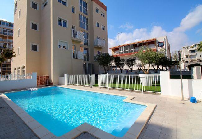 Estudio en El Campello - Estudio con piscina en El Campello