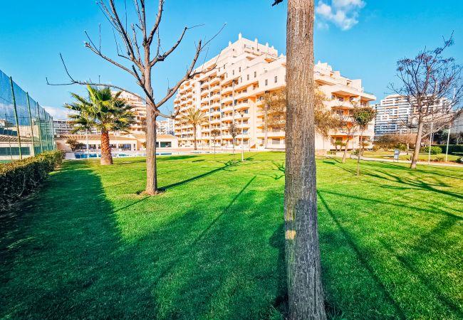 Apartamento en Portimão - Apartamento de 1 dormitorios a100 mde la playa