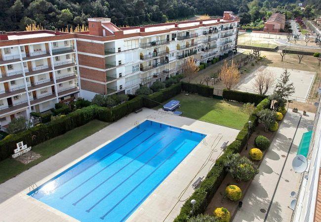 Apartamento en Santa Susana - Apartamento de 1 dormitorios en Santa Susana