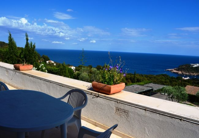 Apartment in Begur - LES OLIVERES  HUTG 004133