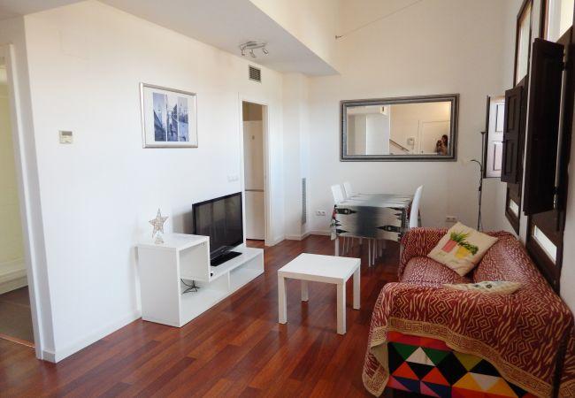 Apartment in Gerona/Girona - Girona Dúplex en zona Catedral 3.1