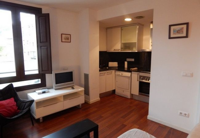 Apartment in Gerona/Girona - Girona apartament Catedral 1.2