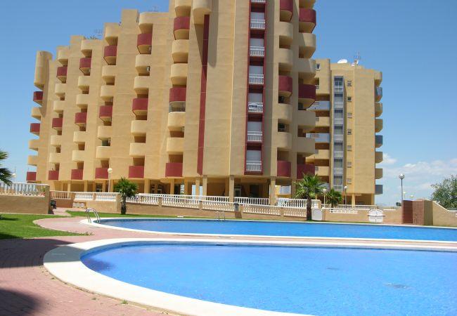 Ferienwohnung in La Manga del Mar Menor - Ferienwohnung mit pool a100 mStrand